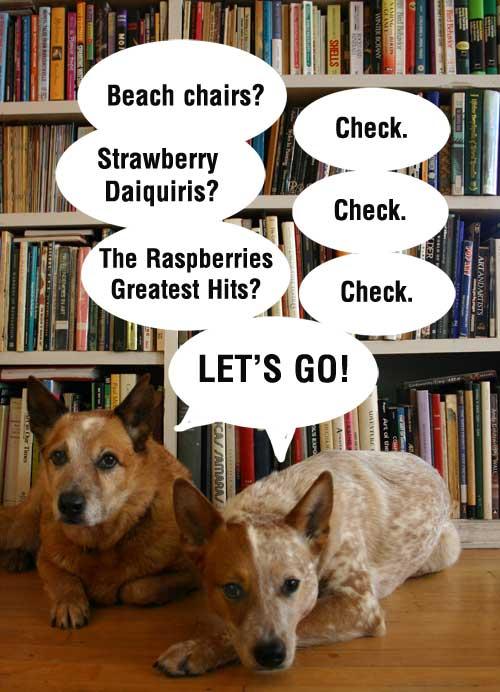 DogsStrawberryDaquiri