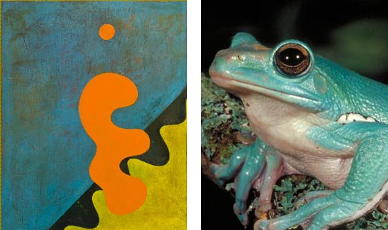 Charles Thomas O'Neil: 2568 (on the left) and a nattily colored frog (on the right)