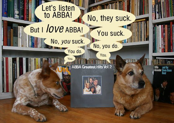 Two dogs bickering over Abba