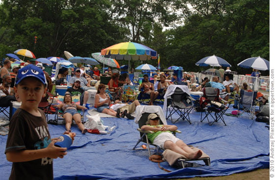 The crowd at the Jazz Festival