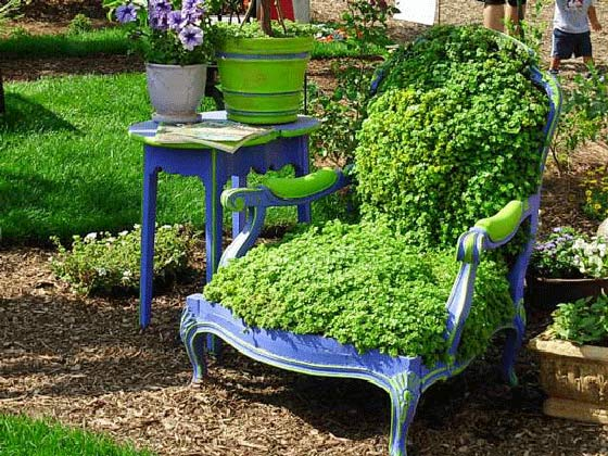 sedum covered armchair