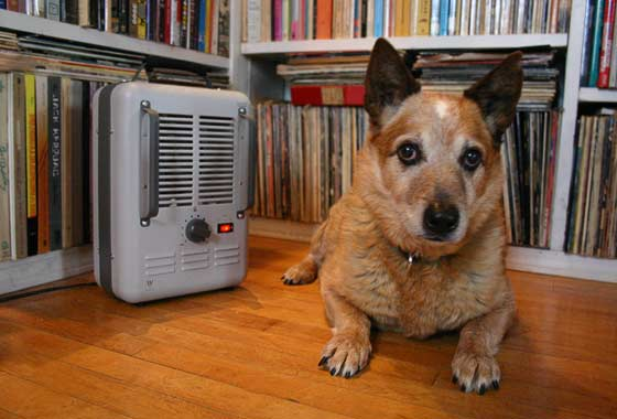 Outside? Uh, okay, but can I bring my space heater along?