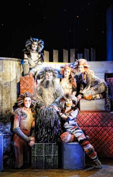 "Kelly Briggs as Old Deuteronomy surrounded by other members of the large and talented cast of ""Cats"" at the Cohoes Music Hall. (photo: Theresa Thibodeau)"
