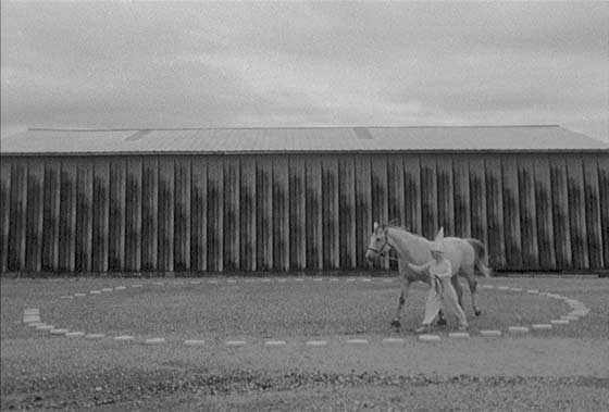 Circus of One (Still from 16mm film, image: Alison Crocetta)