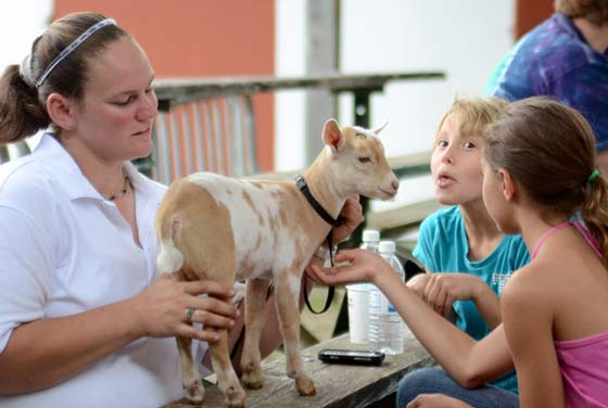 A young admirer tries to get a baby goat to smile prior to going before the judges.