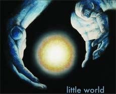 Matt Durfee: Little World