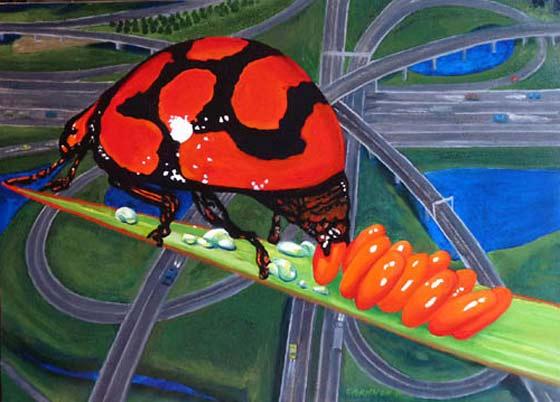 Dave Channon: Mrs. Ladybug @ Limner Gallery
