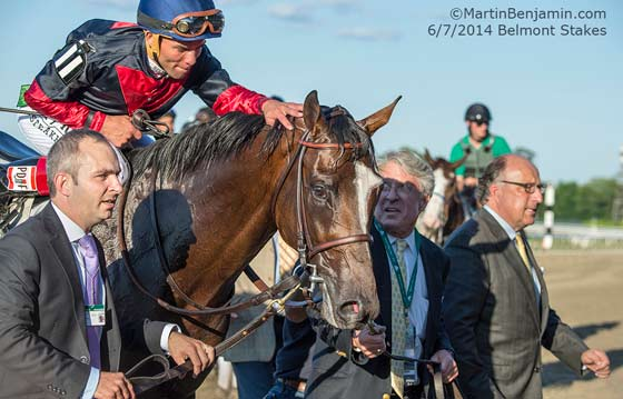 Tonalist being led to the Winner's Circle after winning the Belmont Stakes.  To right: Trainer Christophe Clement, with jockey Joel Rosario on board.