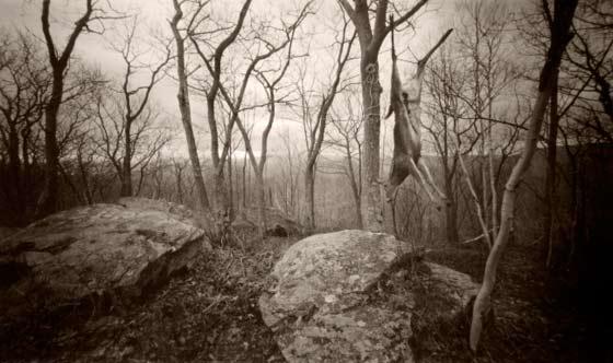 Craig Barber: Harvest @ NOBO Gallery,  Hudson.