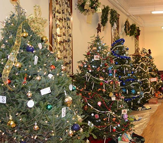 The Festival of trees. Folks get to vote on their favorite tree.