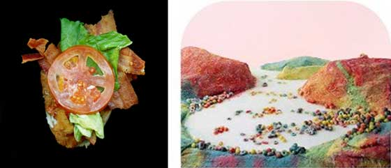 (left) Jon Feinstein: 23 Grams and (right) Barbara Ciurej & Lindsay Lochman: Fruit Loops Landscape @ MCLA Gallery 51