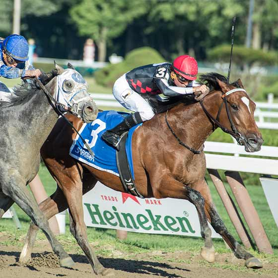 Texas Red, ridden by Kent Desourmeaux, wins the Jim Dandy Stakes, beating Frosted, 8/1/2015.