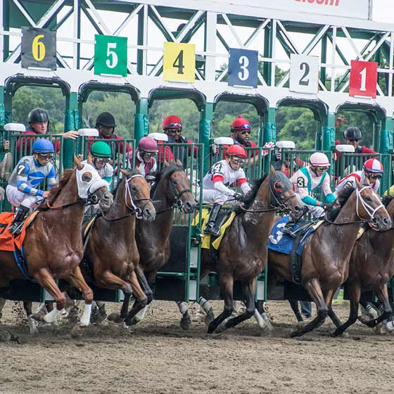 The field leaves the starting gate for the first race of the 2015 season, 7/24/2015