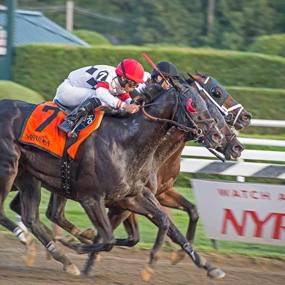 Stall Walkin' Dude prevails in The Tale Of The Cat $100,000 feature race on 8/23/2015.