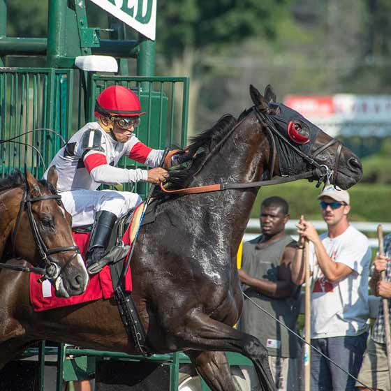 Day of Fury literally leaps from the starting gate on opening day, 7/24/2015.