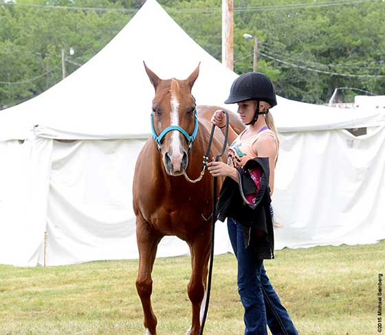A rider and her mount settle after competition.