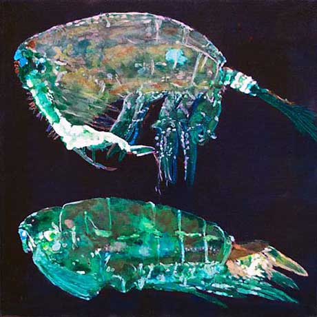 Kathleen Benton, Pontella Securifer - Flourescent (M-F) @ Limner Gallery
