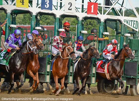 The starting gate opens for the CC Oaks with #1 Songbird getting a jump on the rest of the field.