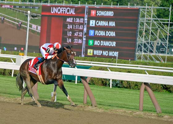 Songbird leads the field coming down the stretch with toteboard behind showing the field for the race.