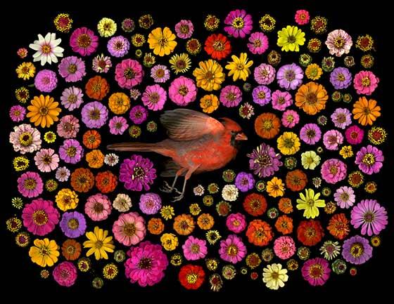 Portia Munson: Cardinal  @ Mandeville Gallery