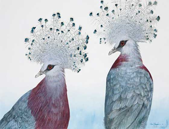 Allen Blagden: Victoria Crowned Pigeons @ The Hyde Collection