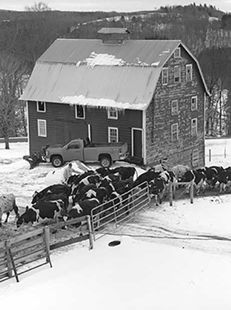 Benjamin Halpern: Sullivan County's Diehl Homestead Farm @ the New York Folklore Society