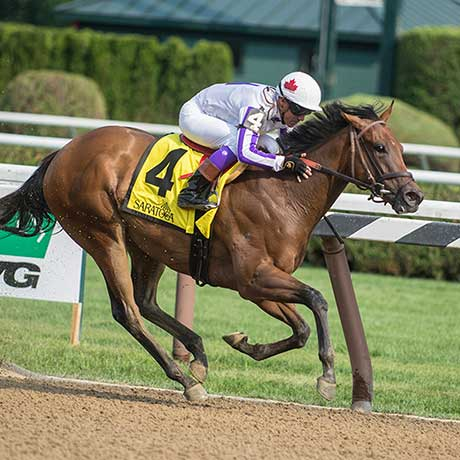 Dream It Is wins The Schuylerville Stakes, Saratoga Racecourse, 7/26/17