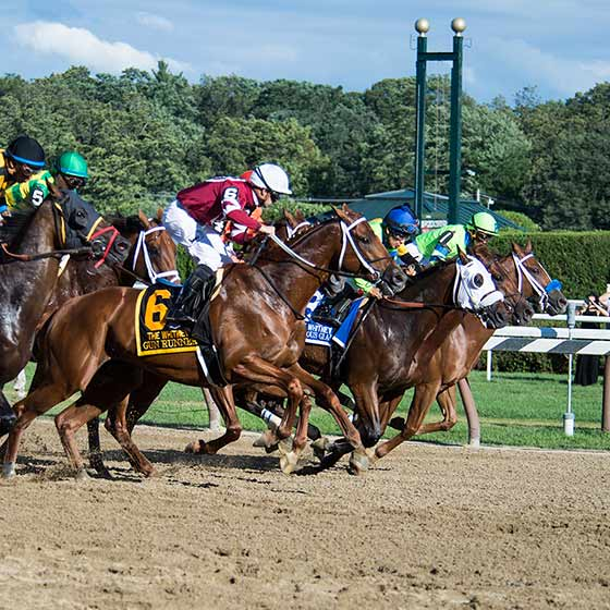 The start of The Whitney Stakes, 8/5/2017.