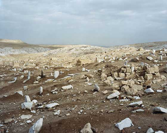 Stephen Shore: Nabi Musa @ The Tang